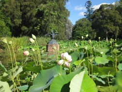 The Botanics