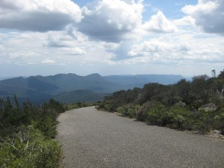 The view from Mt William