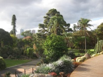 The view from Guilfoyle's volcano in the Botanics