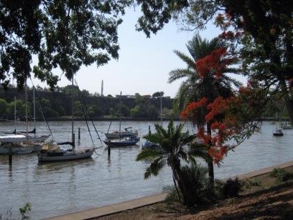 Taken from Brisbane's Botanical Gardens loved the colour of the blossom