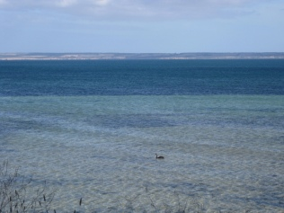 My view as I sat reading by the beach one evening on Kangaroo Island
