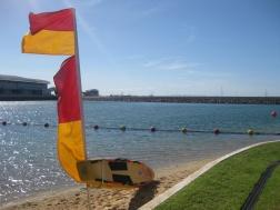 Darwin's beach