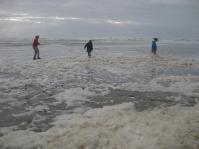 Frolicking in the foam