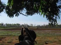 Feet on the farm :-)