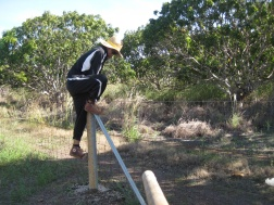 Fence Ninja Go