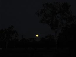 An orange moon!