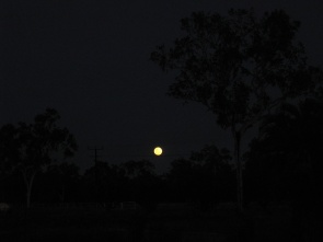 An orange moon!