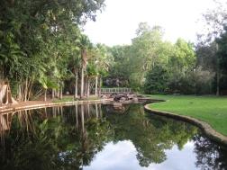 Reflective Botanics
