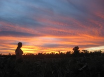 Watching the sunset after a day of zucchini picking