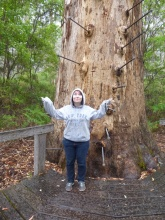 Unhappy with the rain situation at the Gloucester Tree