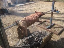 Spit roasting