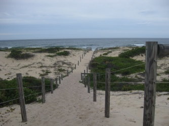 The Beach at Banksia Campground