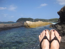 Seal Rocks Feet