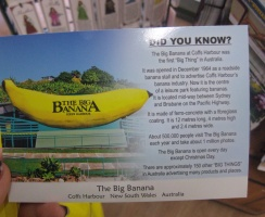 The Biggest Banana
