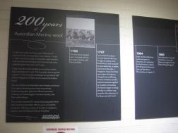 Some Merino history