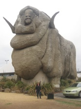 Me at the Big Merino