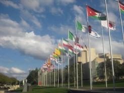 International Flag Display