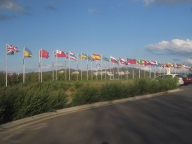 International Flag Display