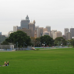 The view of Sydney from Prince Alfred park