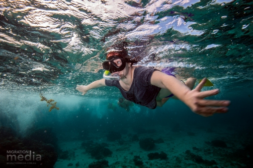 Snorkelling the Ningaloo Reef