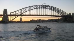 Harbour Bridge sunsets