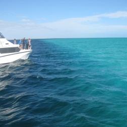 Cruising the seas
