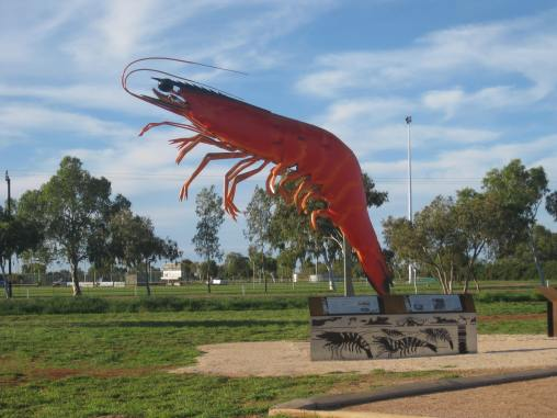 Exmouth's Big Prawn!