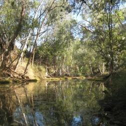 Swimming spots at Tunnel Creek