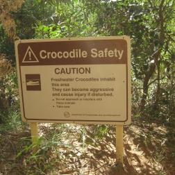 Crocs about!