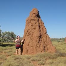 Termite mounds!