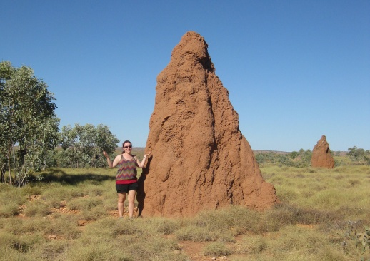 Termite mounds!