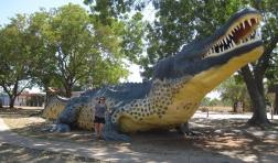 The Big Crocodile