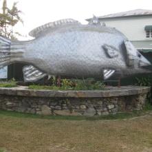 The big Barra