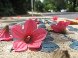 Nice petals