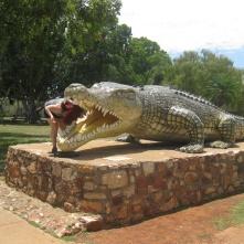 Head in a croc