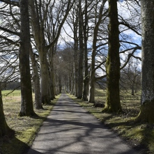 The drive to Drummond Castle Gardens