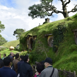 Our tour group in Hobbiton