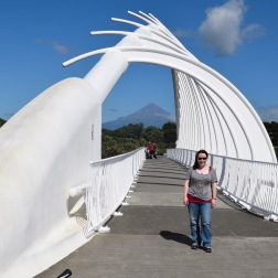Mt Taranaki through Te Rewa Rewa bridge - this mountain captured me whilst we were there!