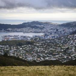 The view from Mt Kaukau